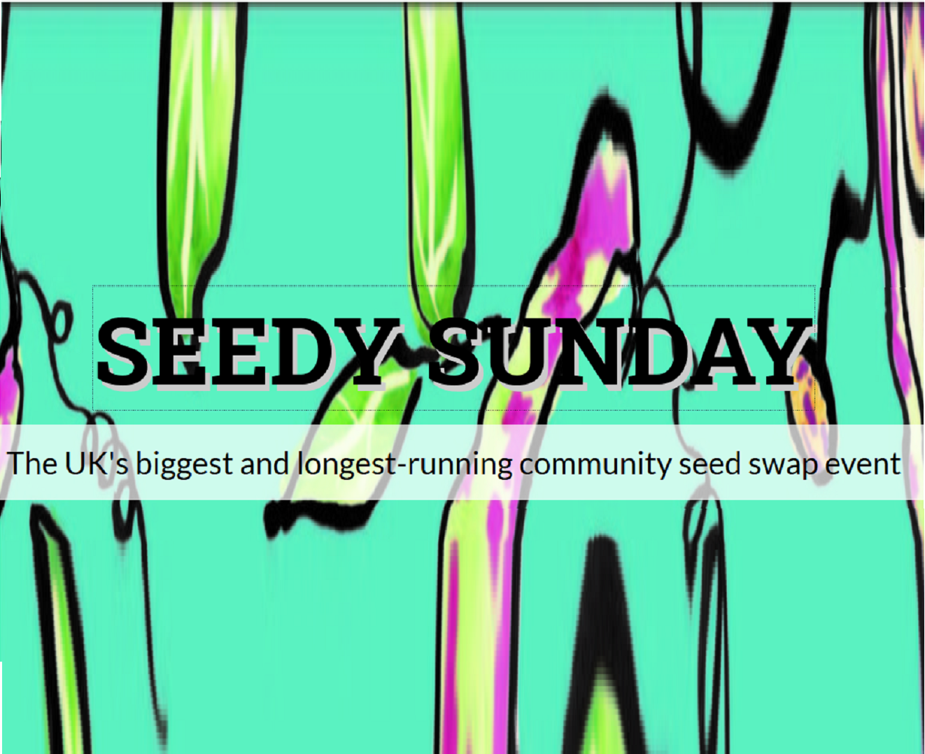 Next Seedy Sunday 2 Feb Brighton